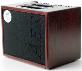"""AER """"Compact 60"""" Acoustic Instrument Amplifier In Oak with Mahogany Stain Finish (60 Watt)"""